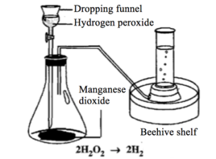 218 describe the laboratory preparation of oxygen from hydrogen put some water and manganese iv oxide acts as a catalyst into the conical flask add drops of hydrogen peroxide urtaz Images